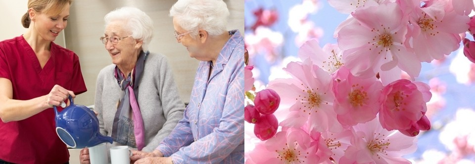 Our American Fork, UT Alzheimer's & Memory Care Services